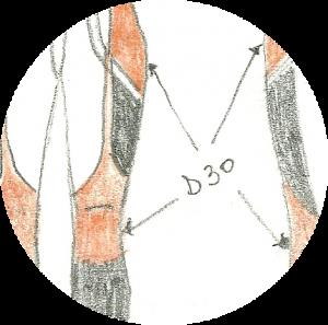 """Projet """"Vêtements MH"""" ERG, détail."""